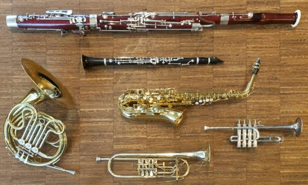 Buy/Sell Wind Instrument